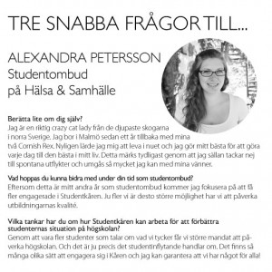 3snabba_alex